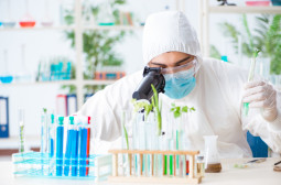 How to Become a Biochemist or Biophysicist